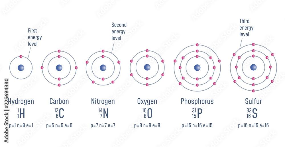 Fototapeta Structure of an Atom