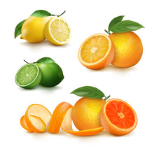 Fresh Citrus Fruits Whole And ...