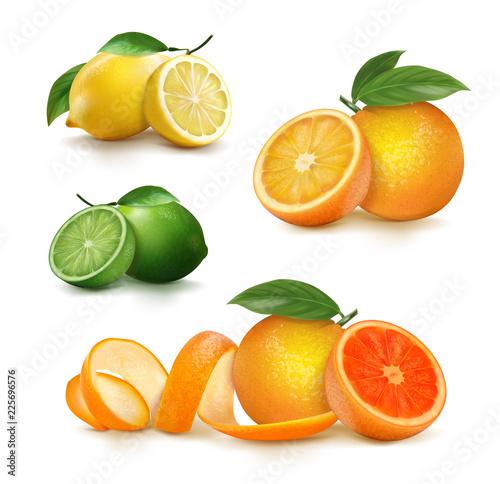 Świeże owoce cytrusowe w całości i połówki. ilustracji wektorowych