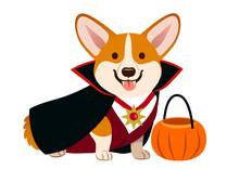 Corgi Dog Wearing Vampire Hall...