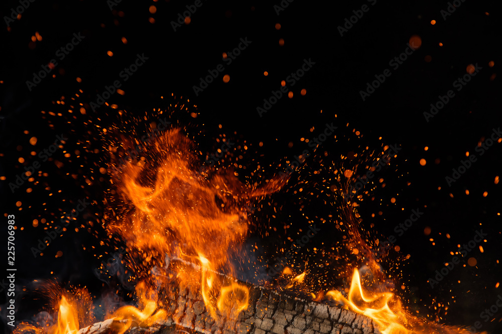 Fototapety, obrazy: Burning wooden logs in fire, campfire on black