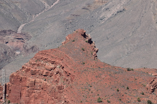 In de dag Donkergrijs Grand Canyon Landscape