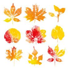 Autumn Watercolor Leaves Impri...