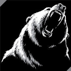 engrave isolated bear illus...