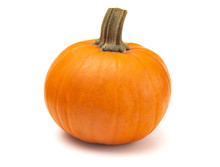 Perfect Pumpkin For Making Into A Pie