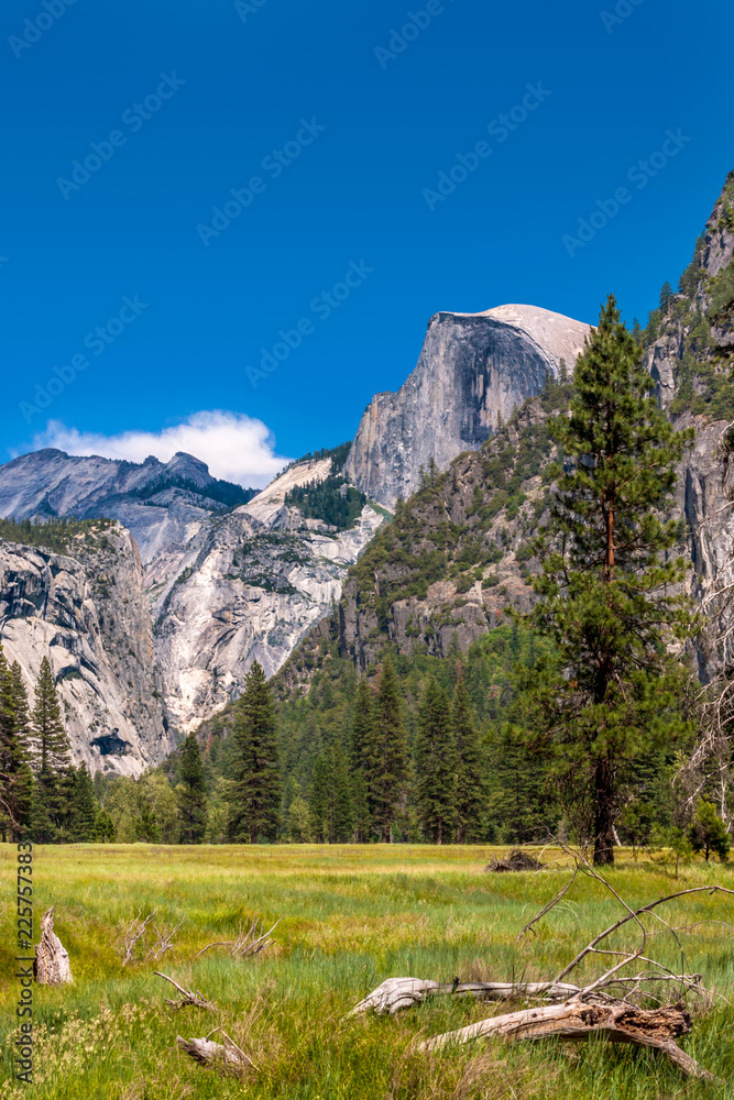Photo  Meadow with view of Half Dome at Yosemite National Park