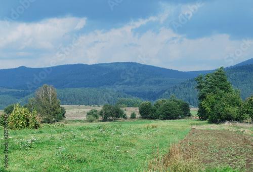 Keuken foto achterwand Olijf горный пейзаж