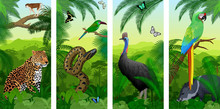 Vector Jungle Rainforest Vertical Baner With Parrot Green Military Macaw, Wild Pig Peccary, Cassowary,  Jaguar Or Leopard, Ape Monkey, Green Anaconda, Crimson-rumped Toucanet And Tropical Butterflies