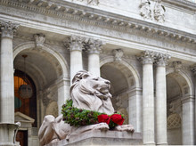 Statue Of The Lion In The New York Library Decorated For Christmas