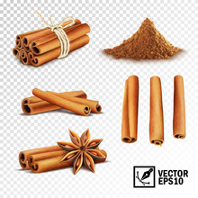 3d Realistic Vector Set Of Cin...
