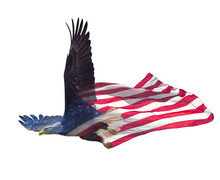 Double Exposure  Of  Bald Eagle On American Flag.