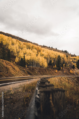 A mountain road surrounded by fall foliage.