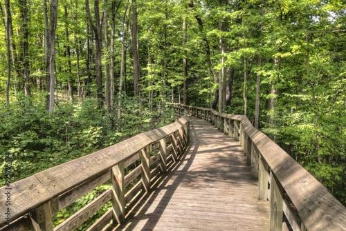 Fotografie, Obraz  Cuyahoga National Park, ohio