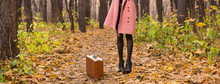Autumn, Fashion, People Concep...