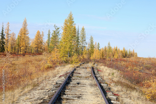 Abandoned railway in autumn in the North of Siberia