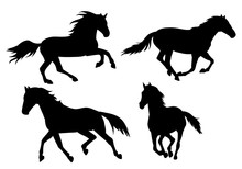 Silhouette Horse Running, On W...