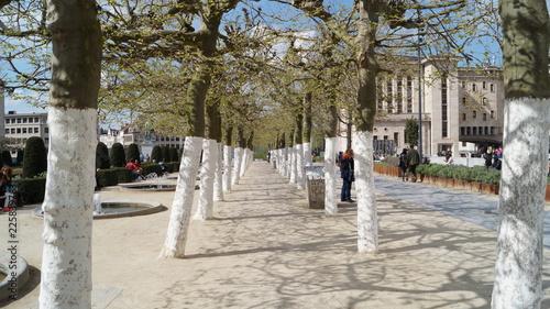 Foto op Canvas Brussel Bruxelles en découverte