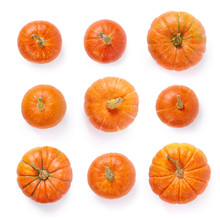 A Set Of Pumpkins Isolated In ...