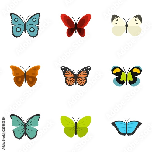 Poster Vogels, bijen Butterfly icons set. Flat illustration of 9 butterfly vector icons for web