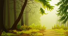 Misty Forest Landscape With Fir Tree And Sunlight Through The Fog. Vector Illustration.