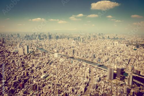Deurstickers Asia land Tokyo city skyline aerial view, Japan