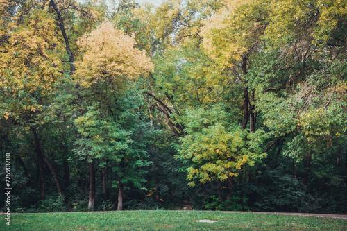 Spoed Foto op Canvas Khaki Autumn landscape in the park.