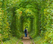 Couple Are Walking In Nature T...