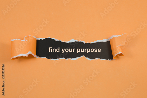 Cuadros en Lienzo find your purpose text on paper