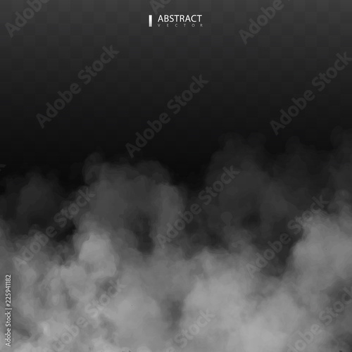 Garden Poster Smoke Fog or smoke isolated transparent special effect. Happy Halloween. Halloween composition. White vector cloudiness, mist or smog background. Vector illustration
