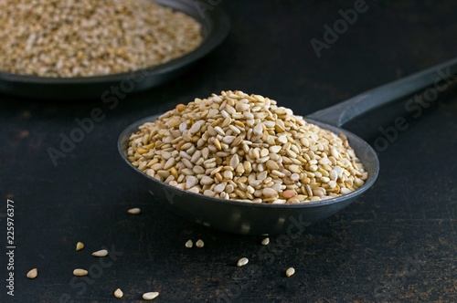 Close up of sesame seeds in a metal scoop