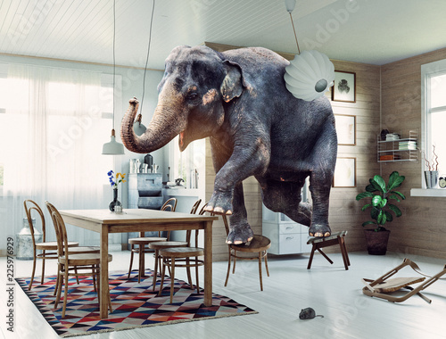Poster de jardin Elephant the elephant and the mouse