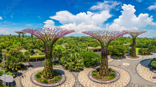 Tuinposter Singapore Gardens by the Bay in Singapore