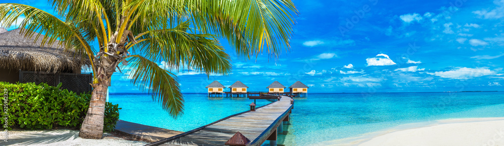 Fototapety, obrazy: Water Villas (Bungalows) in the Maldives