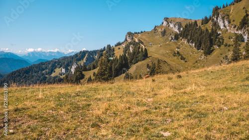 Garden Poster Beautiful alpine view at Brauneck - Lenggries - Bavaria