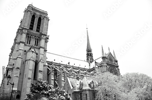 Notre Dame cathedral (Paris, France) covered with snow in rare snowy winter day Wallpaper Mural