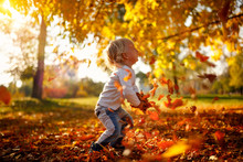 Adorable Child Boy With Leaves...