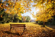 Goldener Herbst Im Park Auf Einer Parkbank