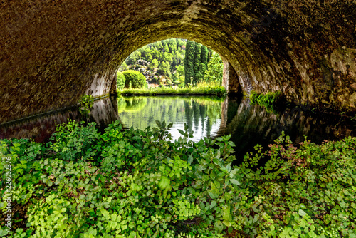Fotobehang Kanaal Kanal Wasser Pflanzen