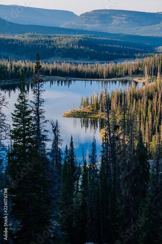 Fotografie, Obraz  Alpine Lake Surrounded by Pine Trees at Sunrise