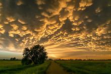 Mammatus Clouds Over North-central Nebraska