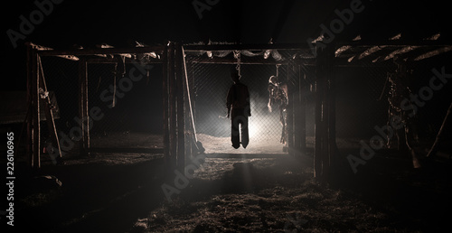 Fotografie, Obraz  Horror view of hanged girl on tree at evening (at night) Suicide decoration