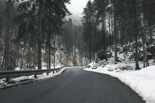 Empty Road Amidst Trees In For...