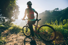 Young Woman Cyclist Carrying Mountain Bike On Summer Forest Trail