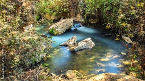 Canvas Prints Forest river Hermon stream Banias river background