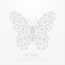 Polygonal Insect. Abstract Geo...