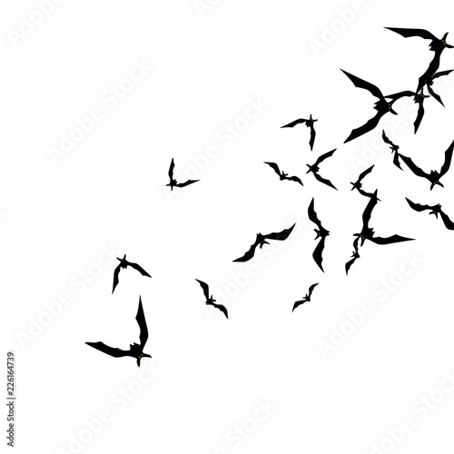 Foto op Canvas Draw Halloween background with black bats on white. Halloween party card background template. black flying bats.