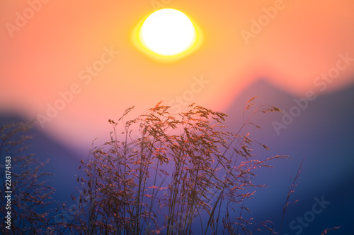 Foto op Plexiglas Koraal A beautiful, colorful, abstract mountain scenery in sunrise. Minimalist landscape of mountains in morning in blue tones. Tatra mounains in Slovakia, Europe.