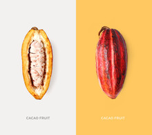 Creative Layout Made Of Cacao Fruit. Flat Lay. Food Concept. Macro  Concept.