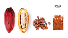 Creative Layout Made Of Cacao Powder,  Cacao Fruit And Cacao Beans On The White Background. Flat Lay. Food Concept. Macro  Concept.