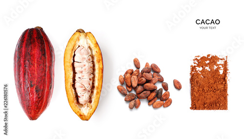 Pinturas sobre lienzo  Creative layout made of cacao powder,  cacao fruit and cacao beans on the white background